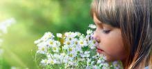 Как научить ребенка любить и беречь природу?