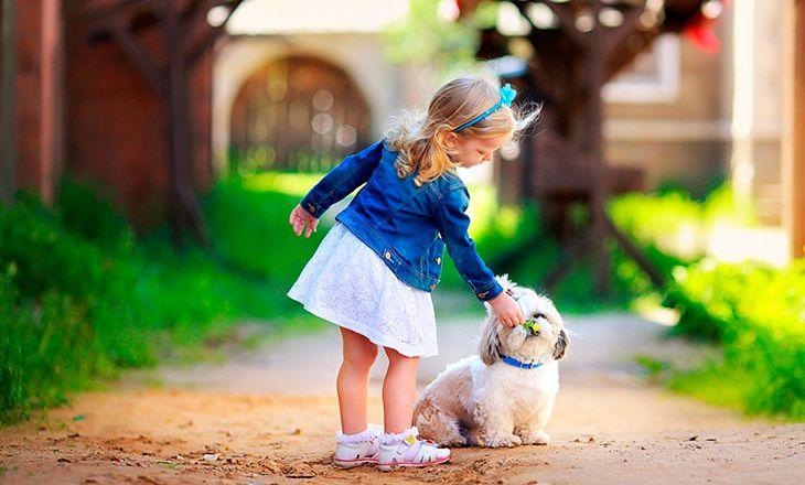 Стоит ли купить ребенку собаку?