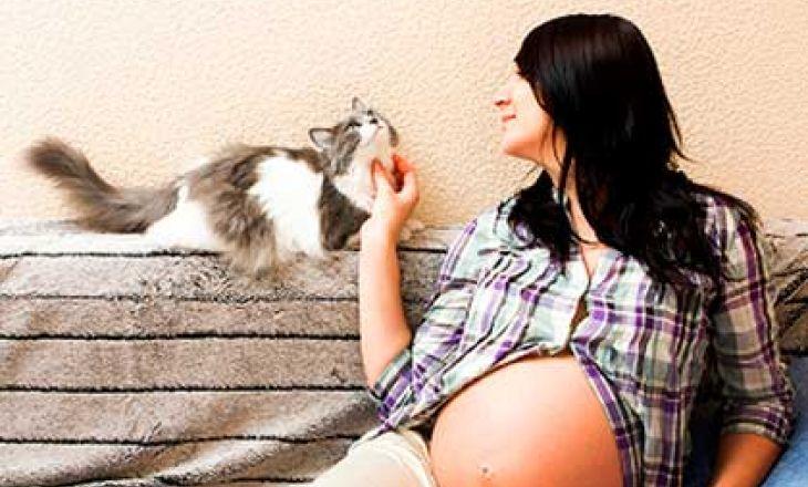Токсоплазмоз у беременных